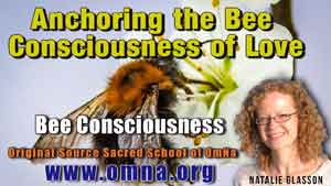 Anchoring the Bee Consciousness