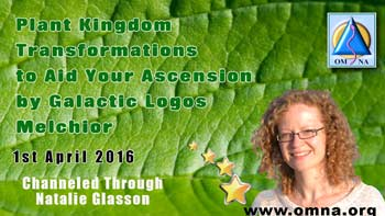 Plant Kingdom Transformations to Aid Your Ascension by Galactic Logos Melchior