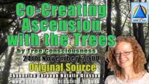 Co-Creating Ascension with the Trees by Tree Consciousness